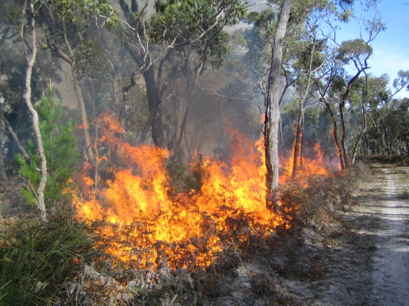 Prescribed Burn For Kellidie Bay Conservation Park