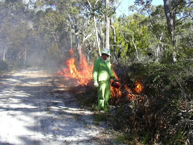 Prescribed Burning Program Readily Available For Residents Online